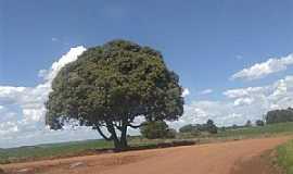 Pinheiro Marcado - Encruzilhada da localidade de Cruzinha, acesso para a Vila de Pinheiro Marcado.