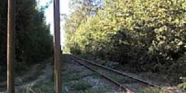 Ferrovia em Povo Novo-RS-Foto:Daniel Dalla Vecchia
