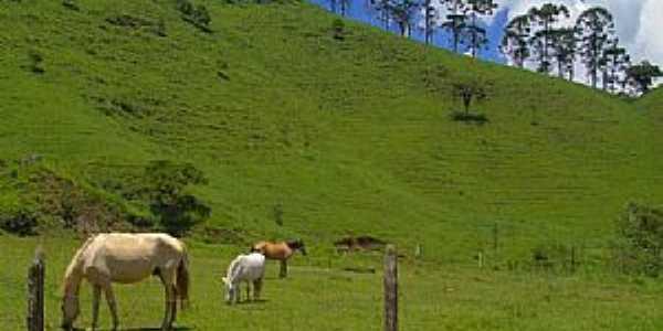 Pulador-RS-Montanhas e pastagem-Foto:!BiG---André S.