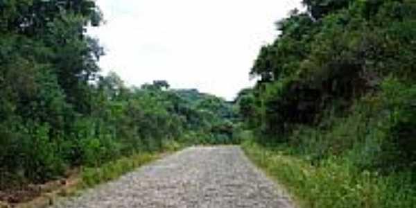 Estrada-por Leonardo Carlesso
