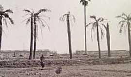 Quara� - Quara�-RS-Fotos Hist�ricas:Pra�a da Prefeitura em 1900