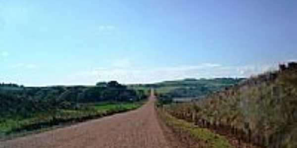 Estrada para Quatro Irmãos-Foto:Daubi