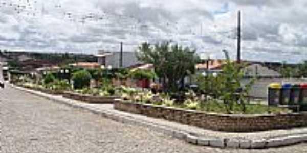 Mairi-BA-Canteiro na Avenida-Foto:Jorge Hirata