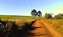 Ronda Alta - Araucárias-eltonstrada