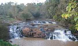 Rondinha - Rio Cachoeira-Foto:VALTER PERUZZO