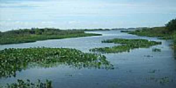 Santa Rita-Foto:jose fernando m ribe…