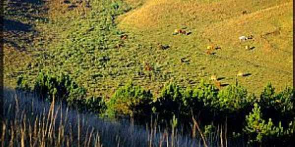 São Francisco de Paula-RS-Pastagem e o rio-Foto:Sunriser ©
