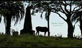 São Gabriel - Monumento à Sepé Tiaraju-Foto:Darlan Corral