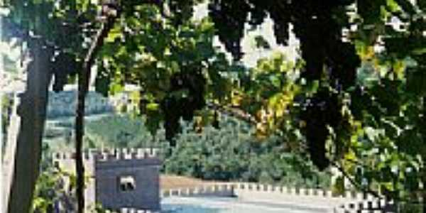 Vinícola Monte Caron-por vilsonjp