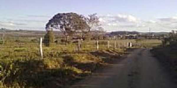 Estrada rural de Marac�s-BA-Foto:Dantes Inferno