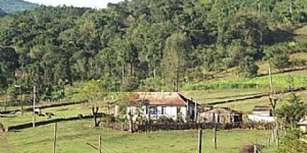 São Roque-RS-Área rural-Foto:www.terragaucha.com.br