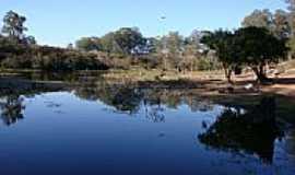 Sapucaia do Sul - Lago no Parque Zoológico-Foto:Henrique de BORBA