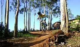 Scharlau - Trilha de Downhill-Foto:Sidinei Pires