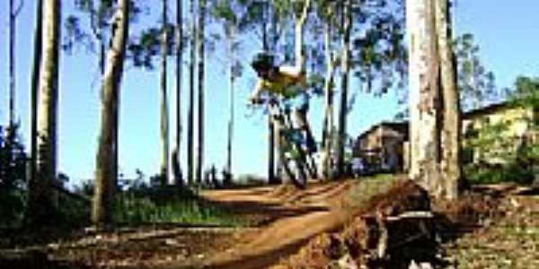 Trilha de Downhill-Foto:Sidinei Pires