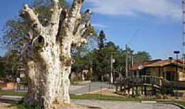 Sertão Santana - Praça Central-por alumoreira