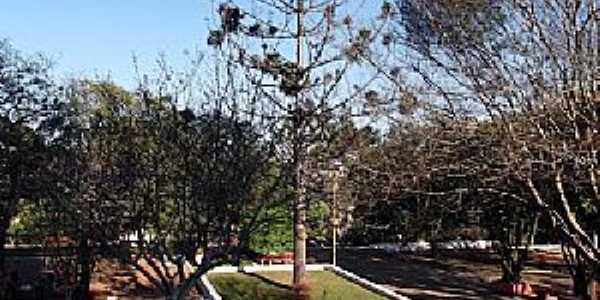 Tapejara-RS-Praça no centro da cidade-Foto:Jose Silva