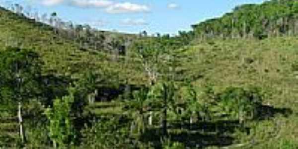 Área rural-Foto:916304