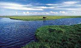 Tavares - Tavares-RS-Parque Nacional Lagoa do Peixe-Foto:NEDE LOSINA