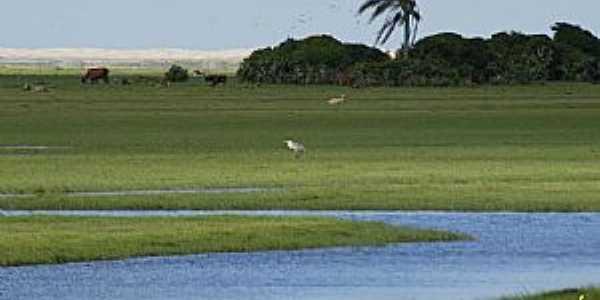 Tavares-RS-Parque Nacional Lagoa do Peixe-Foto:inema.com.br
