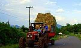Teutônia - Transporte de Fardos de Pastagem-Foto:ANELISE KUNRATH