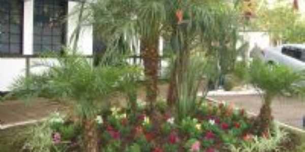 Jardim no Centro Administrativo-Foto:Beatriz Rocha