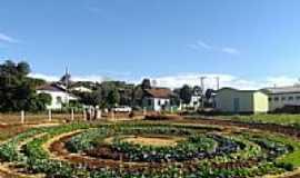 Tiradentes do Sul - Horta Comunitária em forma de Mandala-Foto:Luis Carlos Padilha