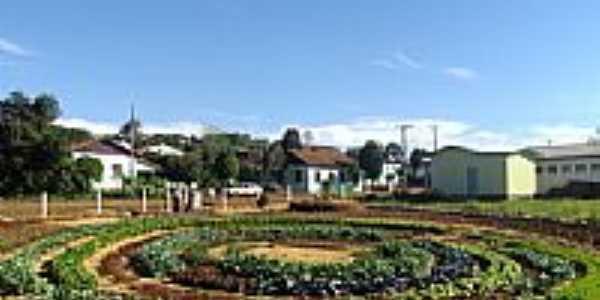 Horta Comunitária em forma de Mandala-Foto:Luis Carlos Padilha