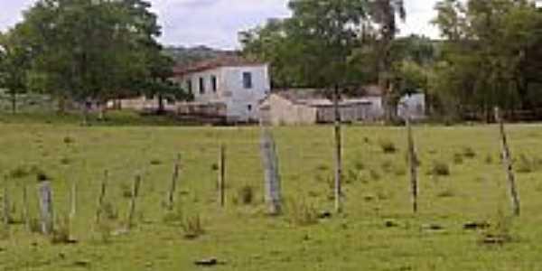 Estabelecimento dos Funari-Foto:Pedro Ufontes