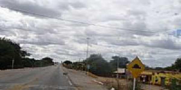 Rodovia Lamanto Junior,BR 47 em Massaroca-Foto:Jorge Hirata