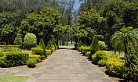 Triunfo - Triunfo-RS-Corredor verde da SITEL-Foto:engfurg