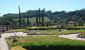 Tuiuti - Tuiuti-RS-Jardim da Vinícola Salton-Foto:dalcio e marilda beregula araujo