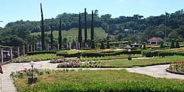 Tuiuti-RS-Jardim da Vinícola Salton-Foto:dalcio e marilda beregula araujo