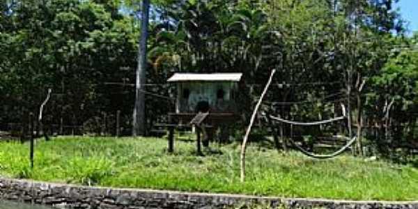 Matinha-BA-Parque Zoobotânico-Foto:Sizinio Neto