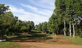 Vista Alegre - Vista Alegre-RS-Piscinão no Acampamento do Salla-Foto:Jorge Alan Bonafé Pessotto