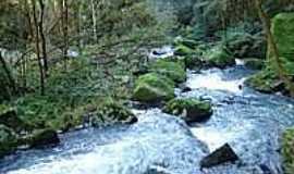 Vista Alegre do Prata - Vale rio marcelino-donin, Por ALCEU DONIN