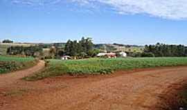 Vista Gaúcha - Estrada de acesso-Foto:Adelino Basso