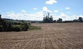 Vitória das Missões - campo pós colheita do soja  por ronaldo lucena