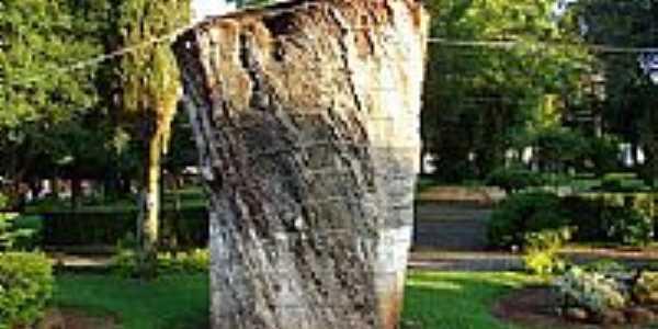Monumento da Imbúia, árvore nativa do Município,com idade estimada em 700 anos em Água Doce-SC-Foto:Diego Augusto Luches…