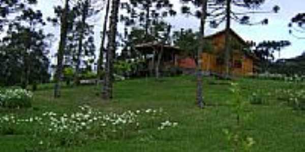 Propriedade em área rural de Águas Brancas-Foto:JUURUBICI