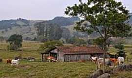 Armazém - Área rural-Foto:Germano Schüür