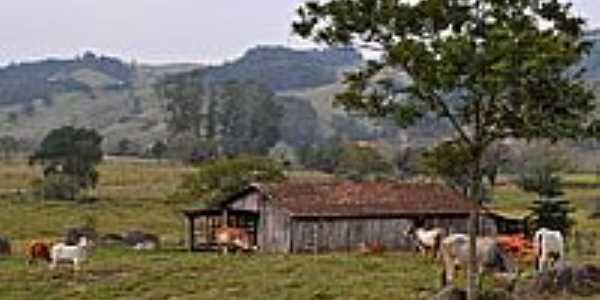 Área rural-Foto:Germano Schüür