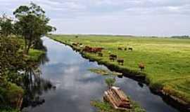 Balneário Gaivota - Balneário Gaivota-SC-Pastagem à beira do rio-Foto:Marlon Antonelli