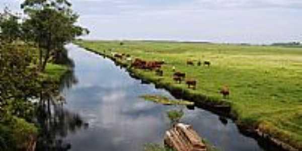 Balne�rio Gaivota-SC-Pastagem � beira do rio-Foto:Marlon Antonelli