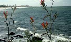 Barra Velha - Barra Velha-SC-Flores e o mar-Foto:Valmice Vieira