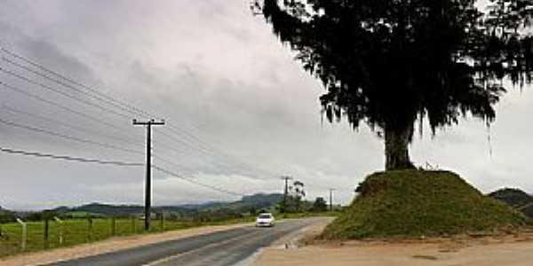 Rodovia SC-482 em Braço do Norte, SC - por Germano Schüür