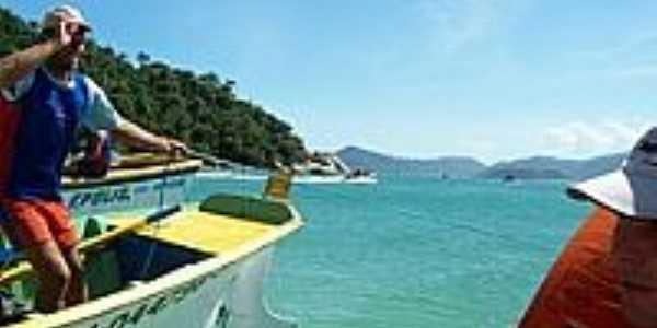 Ilha do Campeche-Foto:Archimedes