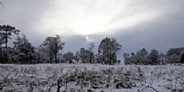Campo coberto de neve na madrugada de 23/07/2013 em Canoinhas-SC-Foto:Johnatan Fuska Leoncio