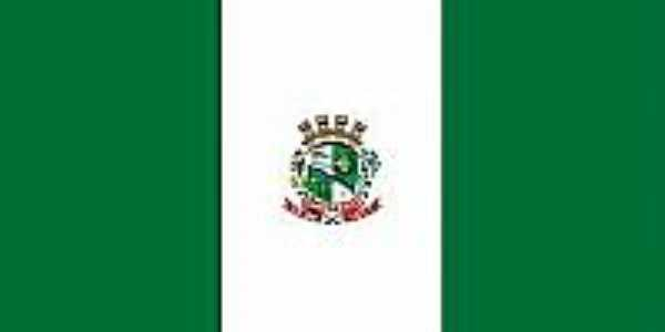 Bandeira da cidade de Chapecó-SC
