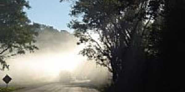 Neblina na estrada por rdemarcor