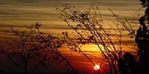 Sol entre árvores por rdemarcor